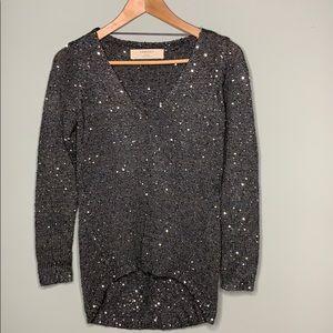 Zara Knit Gray Sequin Sweater